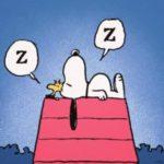 Sonno, Questioni di Coppia e Qualche Consiglio